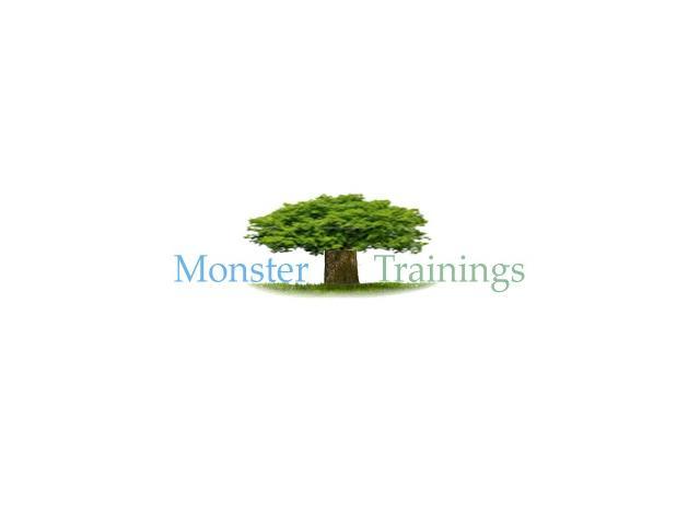 Sap Expertise Online | SAP PP Online Training