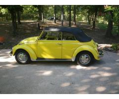 1970 VW Bug Convertible!!!