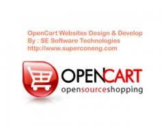 Custom E-commerce Web design & development with easy web CMS