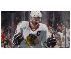 Cheap NHL 15 Coins fitting accomplish the greatest fans