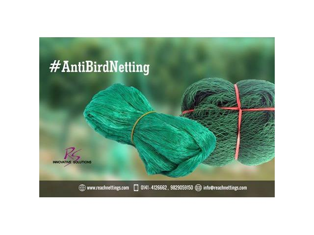 .Reachenttings offer are  Variety of Bird Nets :Pigeon Protection Netting