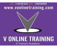 SAP BI Online Training by Experts