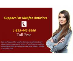 Mcafee Antivirus Tech Support 1-855-442-3666