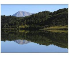 Colorado cabin rentals   Colorado cabins for rent in mountains   Cozy cabin rentals Colorado