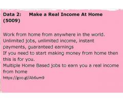 Make a Real Income At Home (5009)
