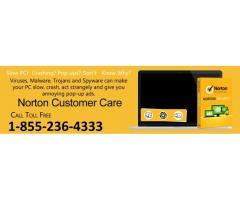 For Norton Antivirus|1-855-236-4333|Norton Support and Setup
