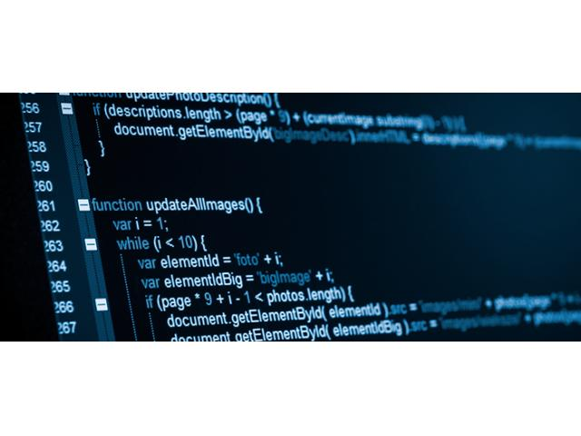 Web Developer/Programmer Wanted