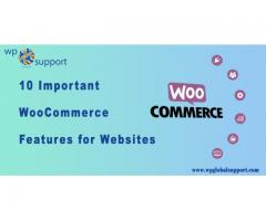 10 Important WooCommerce Features for Websites