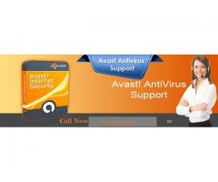 Avast Support Number 099508864