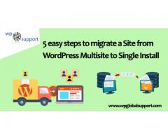 Easy steps to migrate a Site from WordPress Multisite to Single Install