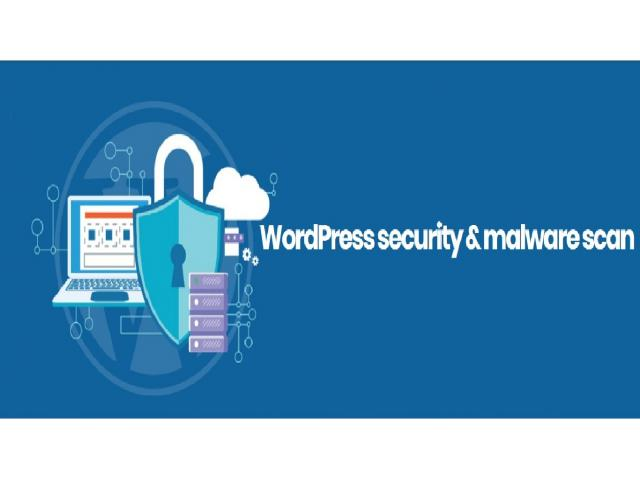How to protect your WordPress site from malicious code